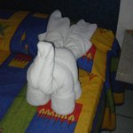 Cute towel animal