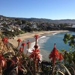 1of the beaches in laguna