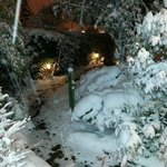 The path from the lodge to the exit. Beautiful, huh? :-)