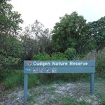                    Interesting coastal vegetation walks