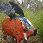 Flying tin pig at Goanna Gallery