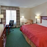 CountryInn&Suites Knoxville I-75 GuestroomKing