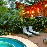 Watch the toucans from your private plunge pool