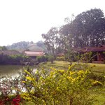                    Nok&#39;s Garden Resort