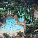 Photo of Adventure Cove Waterpark