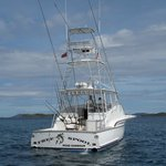 Ocean Surfari - St. Thomas & BVI Fishing Charters