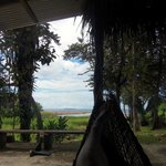                    view of the ocean from the kitchen area hammocks