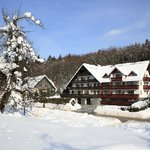 Winter picture og Hotel Gasperin in Bohinj