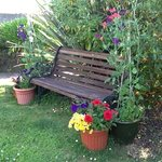 shady bench in front garden