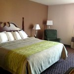 Φωτογραφία: Comfort Inn Near High Point University