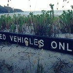 Authorised Vehicle Only