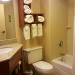 Φωτογραφία: Hampton Inn Harrisburg East (Hershey Area)