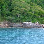                    ISLA DO ARVOREDO