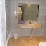                    Bathroom (With Bath and Seperate Shower)