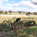Old Plough @ Homestead - Booleroo View B & B
