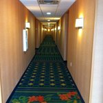 Fairfield Inn & Suites Laredo Foto
