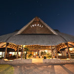 The Amazing Ingeli Forest Lodge