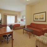 CountryInn&amp;Suites  Saraland  Suite