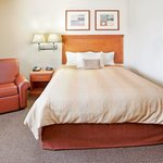 Single Queen Bed Guest Suite