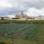 Le Potager du Roi