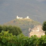 View of Assisi from Agriturismo