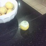Moldy orange in fruit bowl ignored by staff for over 1 hour