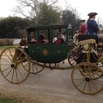 Horse and carriage in Colonial Williamsburg.