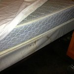 Blood Spots on Mattress