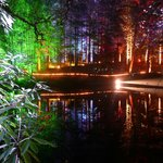                    Pitlochry Enchanted Forest