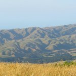                    From Mt Kaukau ... distant hills in the afternoon light.