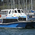 Freedom Bay Cruises- Day Boat Tours