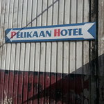 Follow the  Pelikaan to The Wave