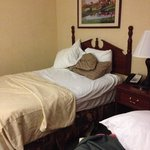 Photo de Baymont Inn & Suites Cleveland