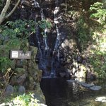 Waterfall in exterior Garden