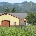Madrigal Vineyards