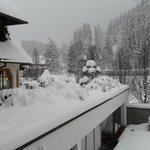 Lots of snow this year - view from our good heated room.