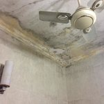 the ceiling of the shower in our room