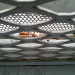 Cigarette butts between window pains and cell bars