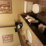 Foto de Holiday Inn Hotel & Suites Council Bluffs-I-29