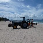 Hahei Beach - tractor time