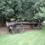 wagon in the garden