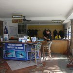                    Dive shop