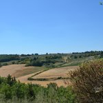 Photo of Podere Il Sodo