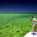 Shallow Tails Guide Service, Inc.