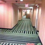 Fairfield Inn & Suites by Marriott - Louisville East Foto