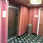 Fairfield Inn & Suites by Marriott - Louisville Eastの写真