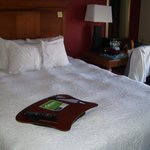 Hampton Inn Louisville Downtown resmi