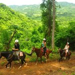 Jaco Beach Horseback Riding
