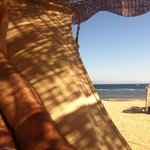 hammock at Coral Coast