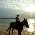 Phuket International Horse Club